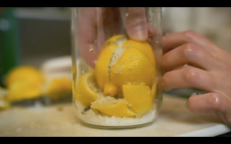 lemon preserve